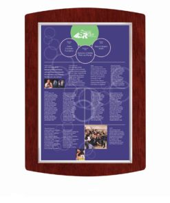 Donor Recognition boards - Easy Update/ Change Donor Names Annually